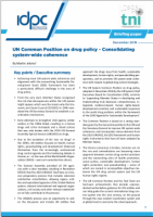 UN Common Position on drug policy