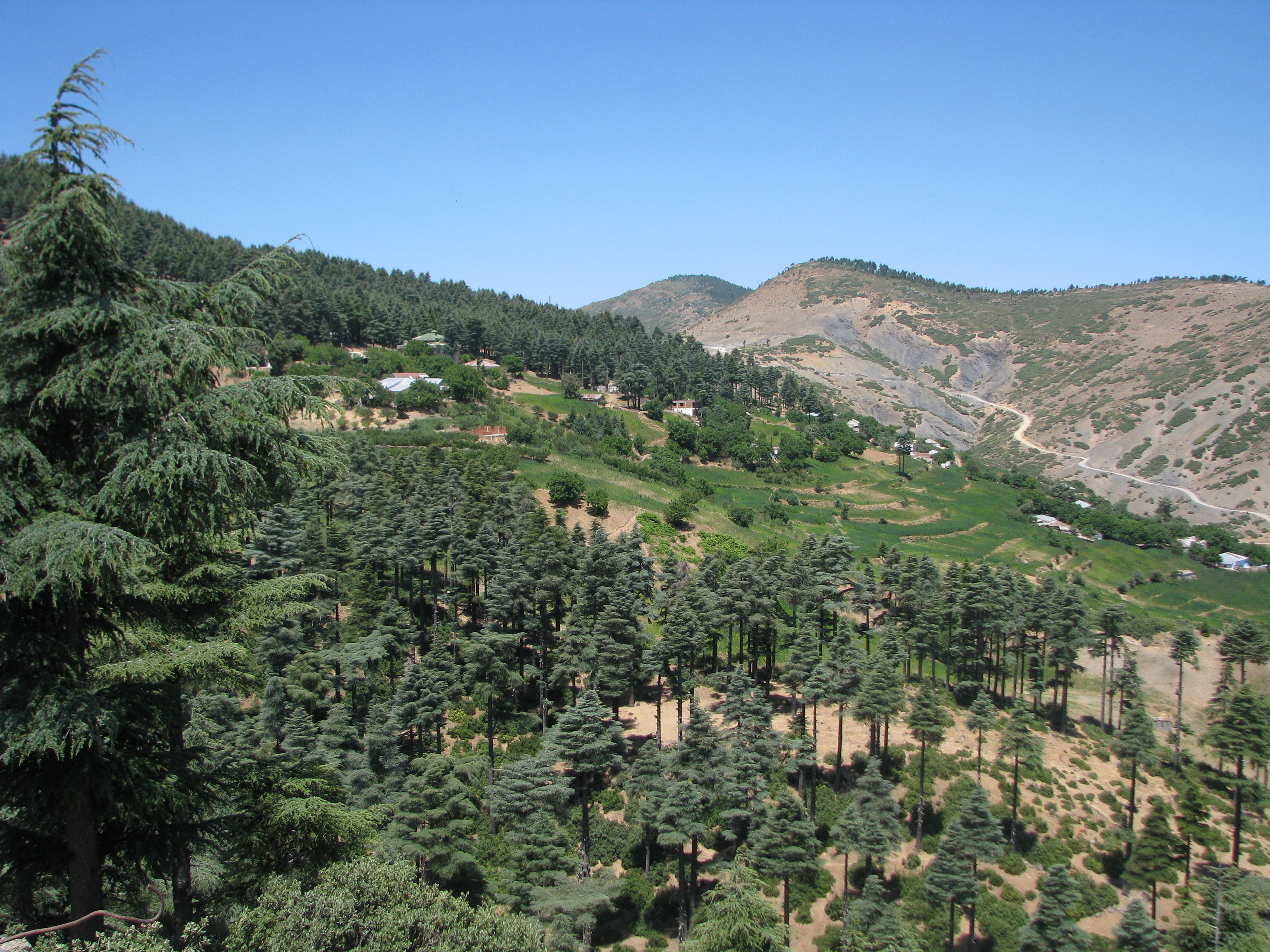 Morocco cannabis fields near Ketama 285