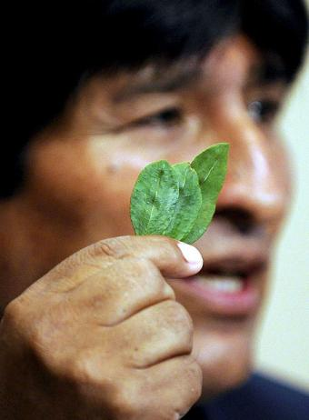 Bolivia proposed to amend the 1961 Single Convention on Drugs