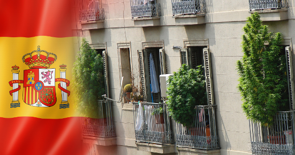 spain cannabis balcony