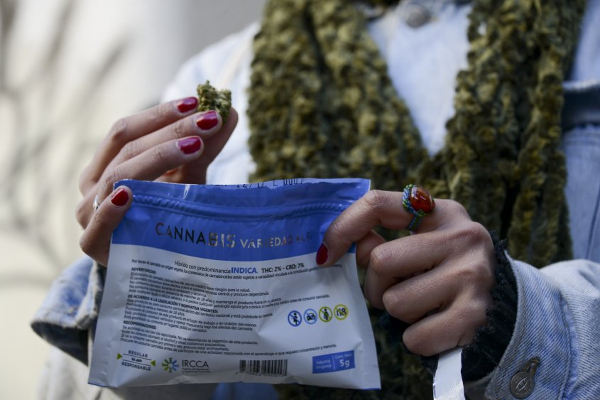 uruguay cannabis legal