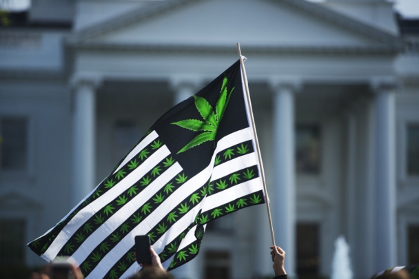 us flag cannabis