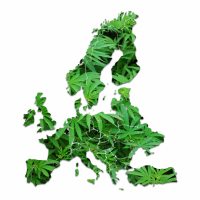 Cannabis regulation and local authorities in Europe